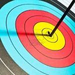 archery target